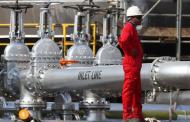 انخفاض أسعار النفط مع تنامي المخزونات الأمريكية