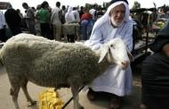 إقبال ضعيف على سوق الأضاحي في الضفة الغربية